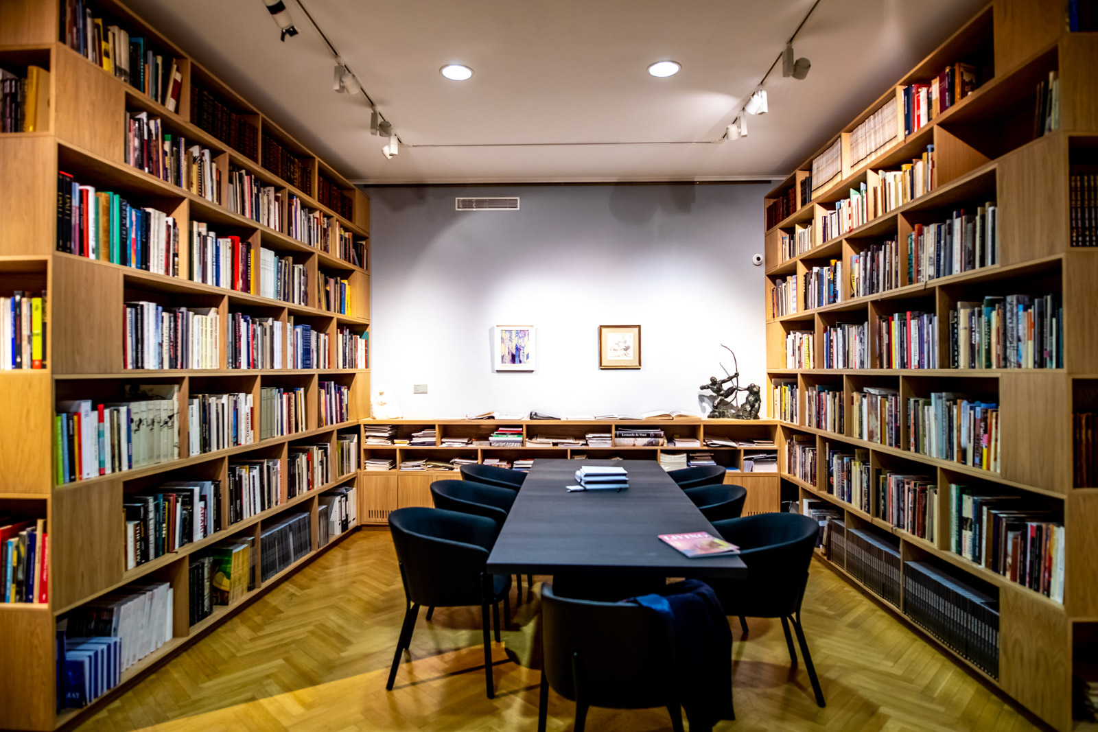 Library of the Cermak Eisenkraft gallery